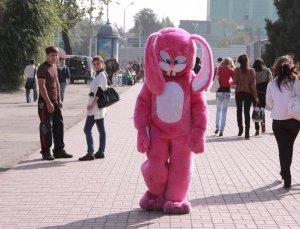 Что не говори а розовый заяц это прикольно