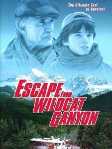 Побег из каньона дикой кошки